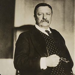 President Theodore Roosevelt (Library of Congress, 1908)